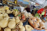 Anno cibo: i piccoli comuni producono 92% prodotti tipici