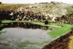 Rifiuti, Musumeci apre un dossier sulla discarica di Caltanissetta
