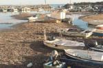Marinella, porto ostaggio di alghe e sabbia
