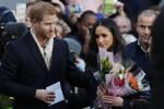 Per le nozze di Harry e Meghan peonie e rose bianche: amate dalla sposa e Lady D