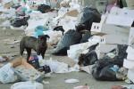 A Licata strade e piazze stracolme di rifiuti