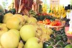Agricoltura, ok dai paesi Ue al nuovo regolamento bio