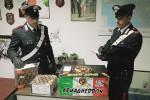 Droga ed esplosivo, arrestato avolese