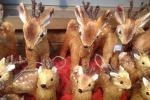 Mercatino Natale Trento dal 18 novembre
