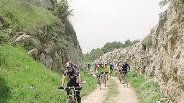 cicloturismo alcamo, Trapani, Economia