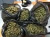 Da Licata la droga per la movida di Catania e Messina, nove coinvolti