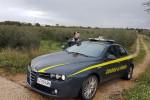 Controlli nella raccolta delle olive a Campobello di Mazara, scoperti 34 lavoratori in nero