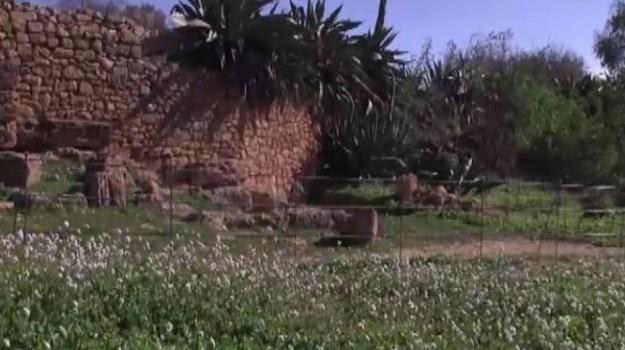 Valle dei Templi, affiora la gradinata del teatro ellenistico