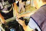 Settecento chili di pesce sequestrati nel Trapanese