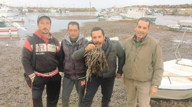 porto insabbiato selinunte, Trapani, Cronaca