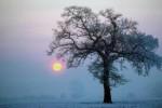 Oggi è il Solstizio d'inverno: il giorno più corto dell'anno