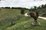 Sei nuove aree entrano nel Registro Paesaggio rurale