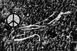 Gli hippy, il femminismo e le proteste: 50 anni dopo quel Sessantotto che cambiò il mondo