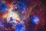 Le stelle 'obese' più numerose del previsto