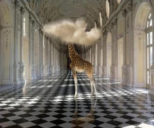 A Massa scatti surrealisti di Herreman