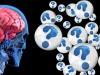 L'Alzheimer non cancella i neuroni