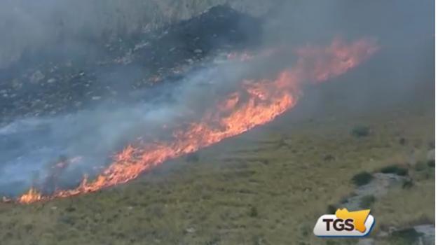 Trapani, 10 associazioni presentano esposto alla Procura sugli incendi estivi