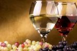 ProWein, vino più light e artigianale, le 5 tendenze del bere