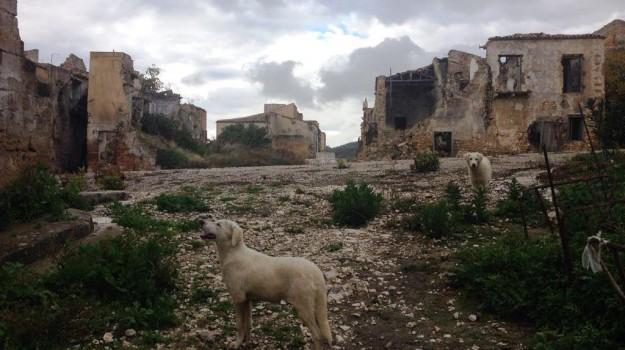 valle del belice, Agrigento, Trapani, Economia