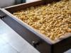 Mipaaf avvia i Distretti del cibo, stanziati 5 mln per 2018