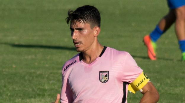 calcio serie b, calciomercato palermo, Palermo, Qui Palermo