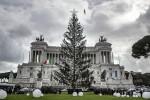 Bye bye Spelacchio, l'albero di Natale romano diventerà una nursery