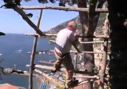 I limoni di Amalfi e il contadino acrobata (di 83 anni)