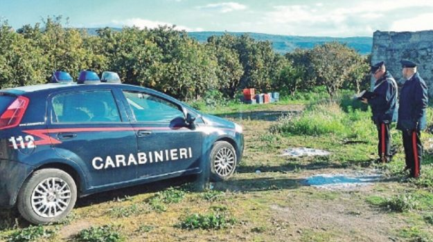 Carabinieri denuncia Ribera, Agrigento, Cronaca