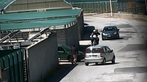 Barcellona operazione Gotha, Messina, Cronaca