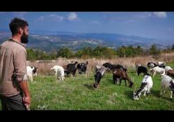 Road to Myself - Un viaggio fuori dagli schemi tra antichi percorsi dell'Italia del Sud