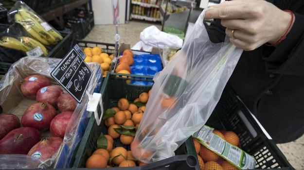 sacchetti bio a pagamento, Sicilia, Politica