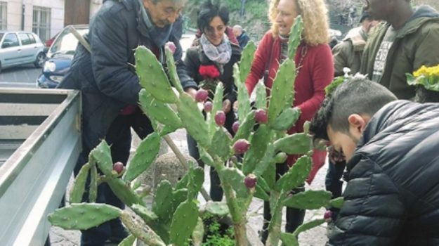 iniziativa antirazzismo messina, Messina, Cronaca
