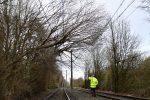 Nord Europa flagellato dalla tempesta Friederike: almeno dieci morti