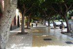 Agrigento, nuova potatura degli alberi in Viale della Vittoria