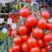 Mipaaf, parte campagna promozione pomodoro pachino nella gda