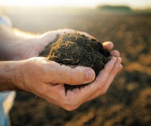 Agricoltura:Cia,impegno politica per innovare e semplificare