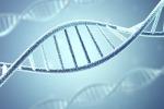 Tumori, al via progetto per il sequenziamento del genoma su 1000 pazienti
