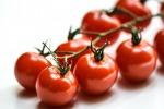 Dimezzando irrigazione dei pomodorini, aumenta la qualità