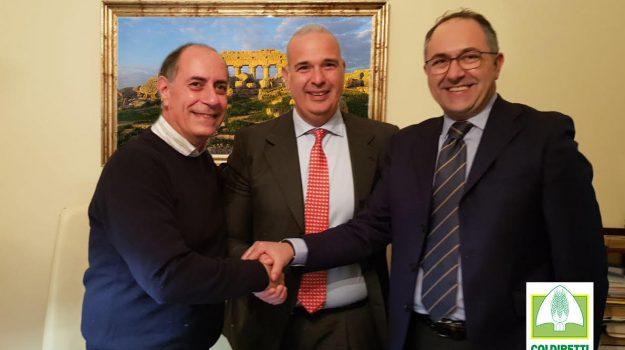 coldiretti, Trapani, Economia