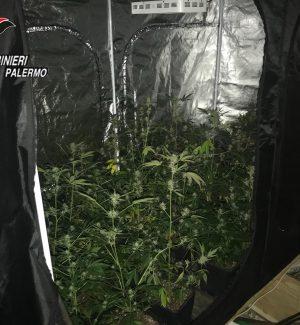 Falegnameria abusiva e droga in casa, due arrestati a Balestrate