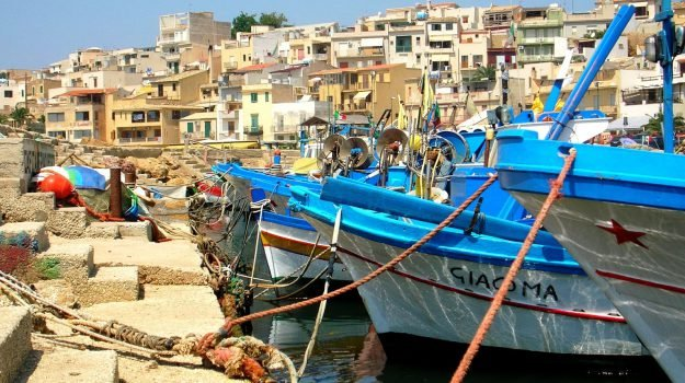 alghe porticciolo selinunte, Trapani, Economia