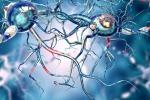 Prima macchina che cura tremore del Parkinson con ultrasuoni