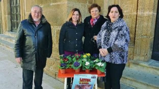 solidarietà sciacca, Agrigento, Cronaca