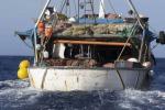 Al via nuove misure per la pesca del pesce spada