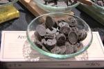 Il cioccolato italiano del futuro? «Tracciabile e buonissimo»