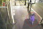 Ventenne inglese rapinata e violentata a Palermo, arrestato ex Pip - Video