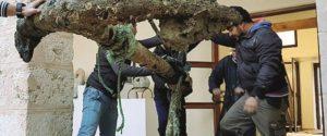 Museo a Licata, sì al progetto per il chiostro