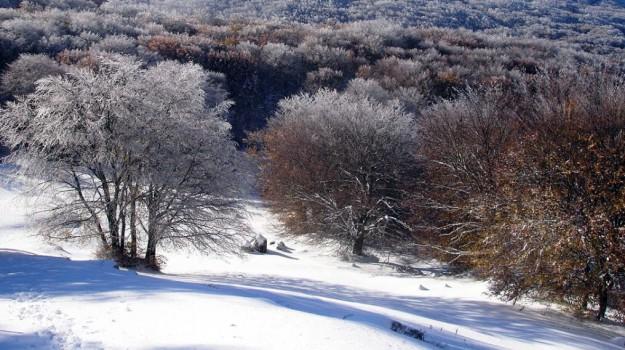 neve in sicilia, neve piano battaglia, Sicilia, Cronaca