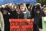 Strage dei cani a Sciacca, dopo le proteste via alle sterilizzazioni