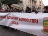 Allevatori in piazza a Palermo: chiedono lo sblocco dei contributi europei - Video
